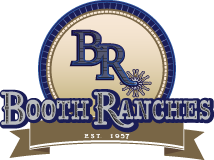 Booth Ranches Quarter Horses