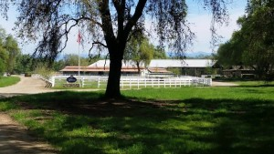 BR Barn and pasture
