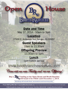 2014 BR Open House