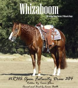 Whizaboom 352